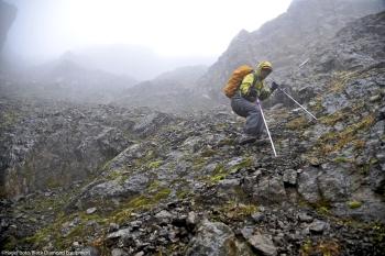 Trekkingstöcke und Wanderstöcke Online Shop