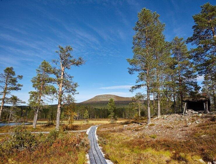 """Ansicht der Landschaft auf dem Fernwanderweg """"Südlicher Kungsleden"""""""