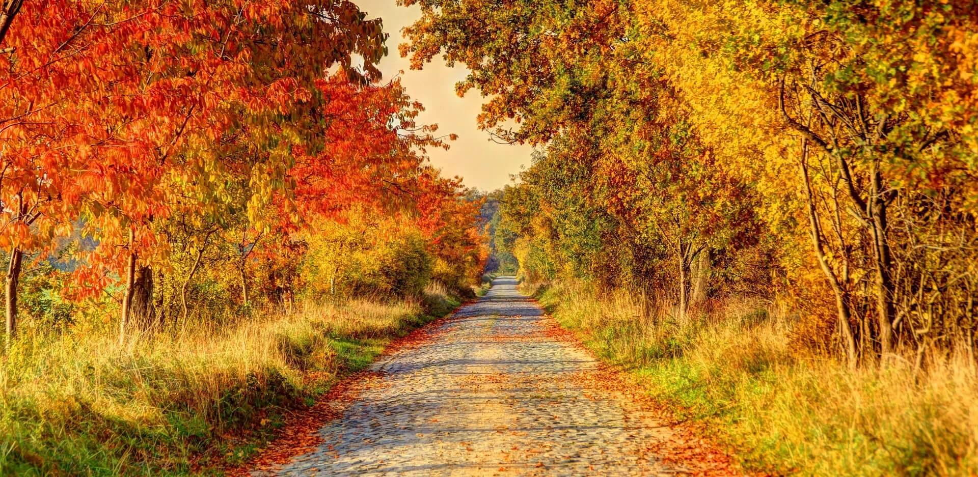 Wanderungen im Herbst - Schweiz